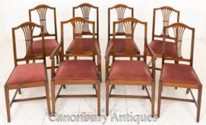 Definir cadeiras de jantar Hepplewhite em mogno